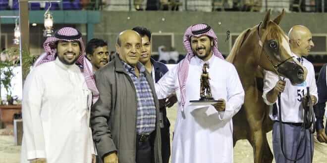 بطولة منطقة مكة المكرمة الدولية لجمال الجواد العربي 2018